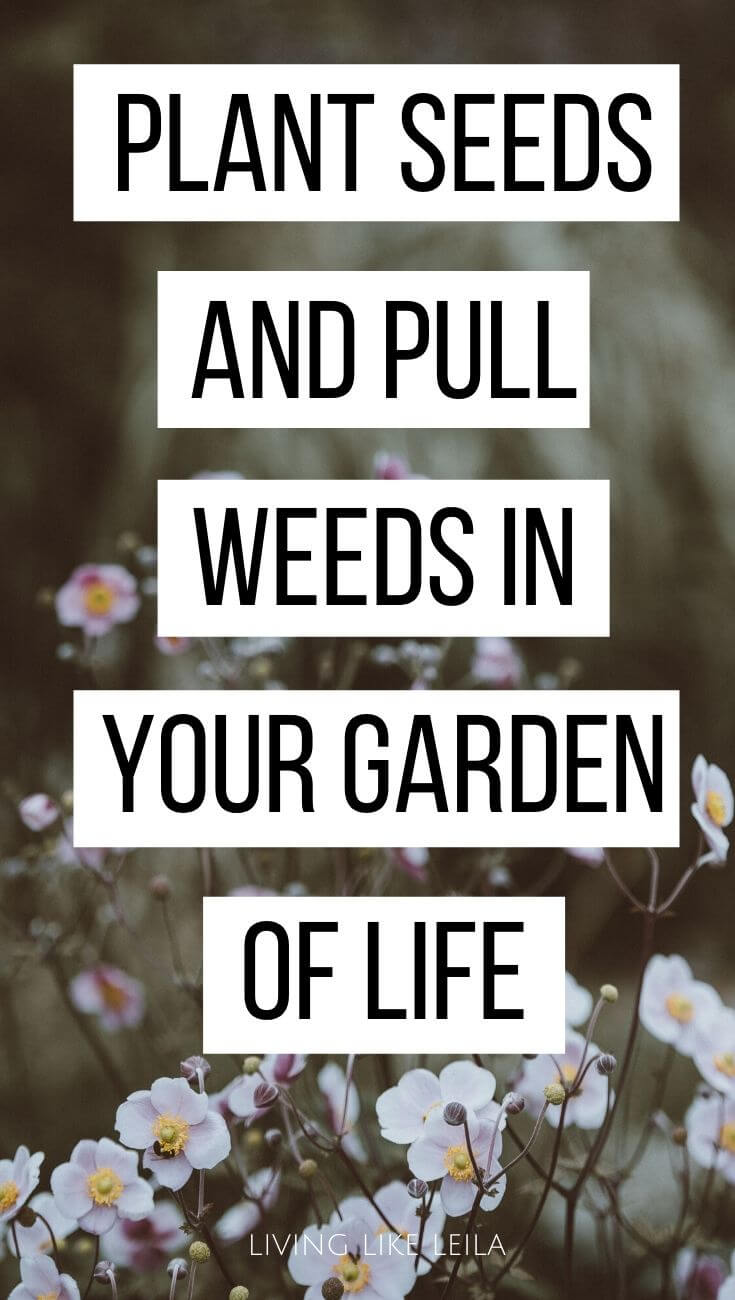 Our lives are a lot like a garden.  You can grow a beautiful life the more you plant seeds, pull weeds, and nurture your garden. www.LivinglikeLeila.com
