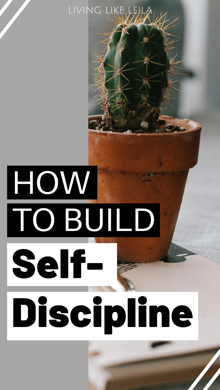How to build self-discipline to actually take action on your goals and reach your full potential. www.LivinglikeLeila.com